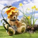 Osterglocke - Daffodil 35 cm Teddybär von Hermann-Coburg